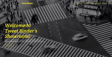 custom projects with Tweet Binder
