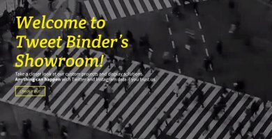 data visualization tweet binder