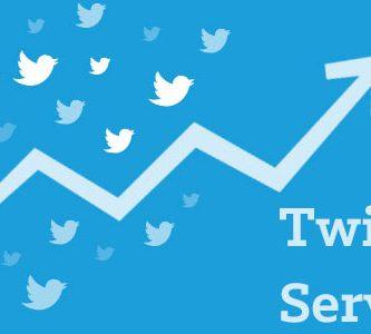 Twitter services offered by Tweet Binder