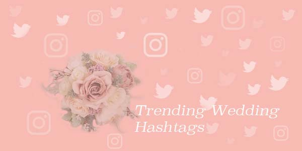 Tweet Binder analyzes Twitter and Instagram wedding hashtags