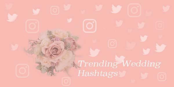 Tweet Binder analyzes Twitter and Instagram wedding hashtags