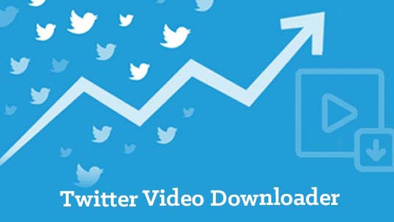 Twitter Video Downloader   How to download Twitter videos