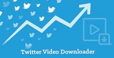 twitter video downloader by Tweet Binder